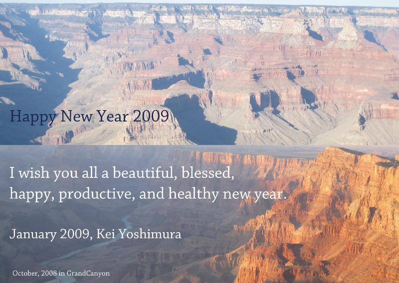 Happy 2009!!